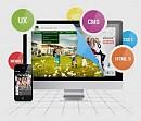 Website Designing Development Company Pune